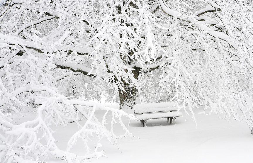 erste Schneemeldung aus demNorden