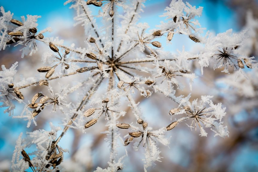 Von Winter-Ade..