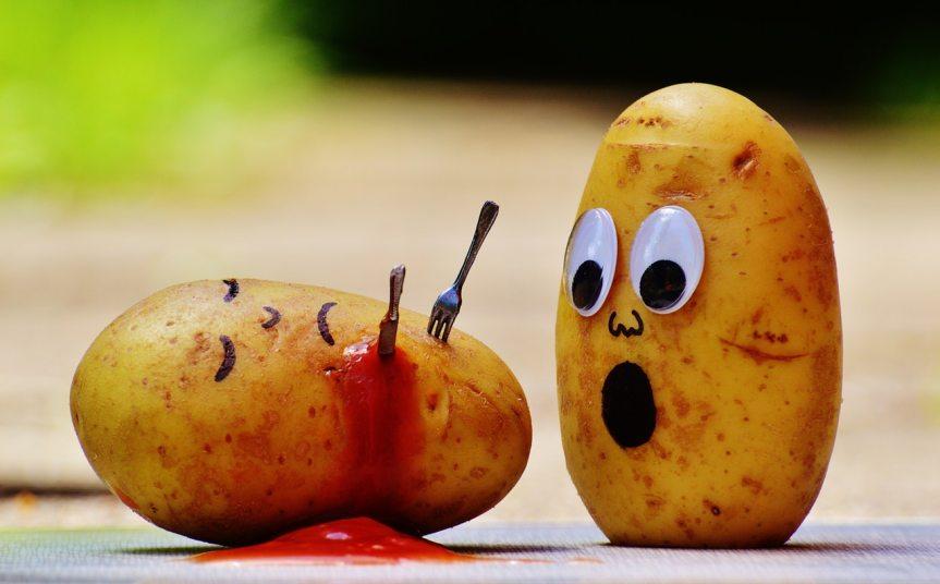 Kartoffelbücher und ihrNachspiel